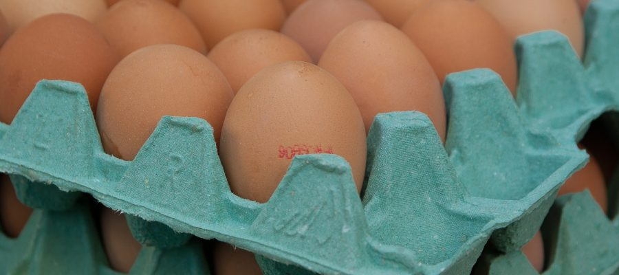 eggs-1887395_1280