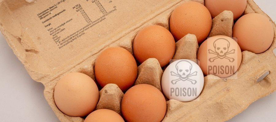 giftige eier
